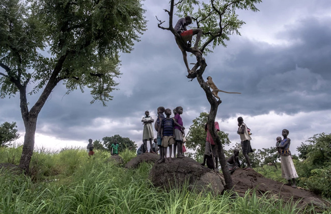 In Uganda's Refugee Camps, South Sudanese Children Seek the Families They've Lost