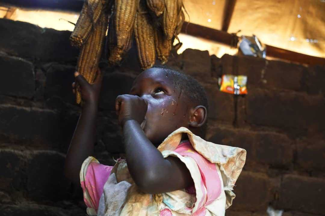 Fragile Stability Sparks Slow Return of Refugees to South Sudan even as Need for Aid Increases Amid Rising Food and Health Crises